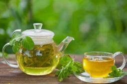 Obésité et surpoids : le thé vert pourrait vous aider