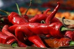 Le piment le plus fort du monde provoque de terribles migraines à cause d'une vasoconstriction