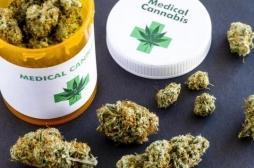 Stress post-traumatique : du cannabis pour soulager les symptômes ?