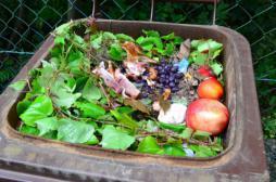 Gaspillage alimentaire : les associations reçoivent 800 000 euros d'aide