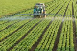 Pesticides : bataille sur les conditions d'épandage