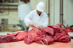 Diabète de type 2 : moins de viande rouge peut protéger