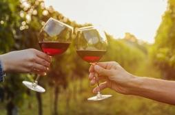 Le vin rouge aurait des effets positifs sur le microbiote intestinal