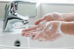 TOC de l'hygiène : simuler l'exposition aux excréments pour s'en débarrasser