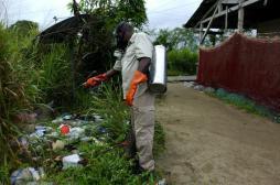 Zika : le littoral de la Guyane a atteint le seuil épidémique