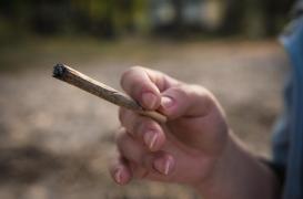Cancer des testicules : fumer du cannabis pourrait être un facteur de risque