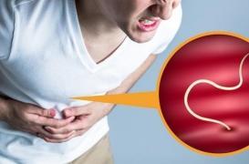 Attention aux infections par un parasite si vous mangez du poisson cru ou juste mariné