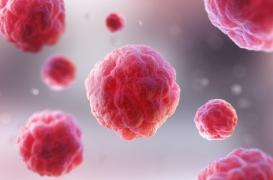 Démence : utiliser l'autophagie des cellules pour créer de nouveaux traitements