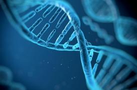 CRISPR : des scientifiques testent les « ciseaux génétiques » sur des cas de cancer et des virus