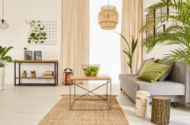 Les plantes en pot n'améliorent pas la qualité de l'air intérieur