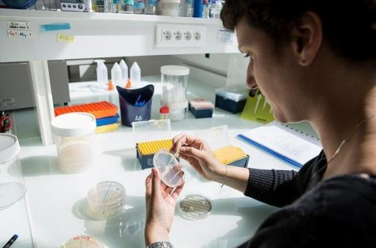 Antibiotiques, troubles de l'érection, la médecine avance par sérendipité