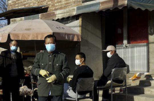 Grippe aviaire : le virus H7N9 est l\'un des plus dangereux