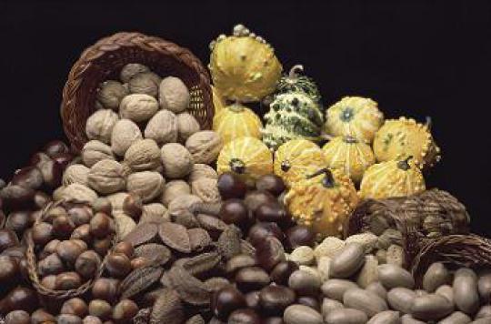Cacahuètes et noisettes : bonnes pour la ligne et la santé
