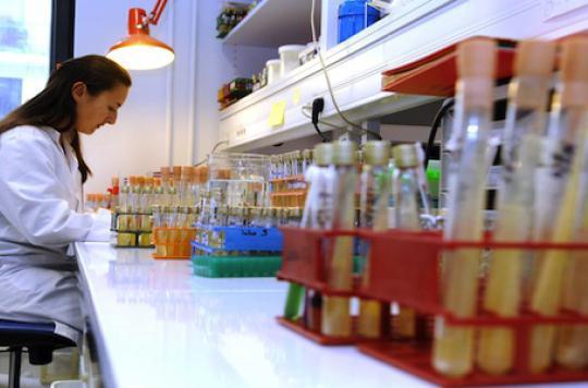 La bactérie Clostridium se répand à Marseille