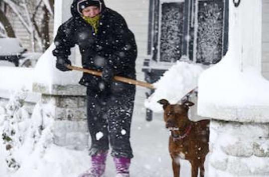 Grand froid : protéger les personnes fragiles