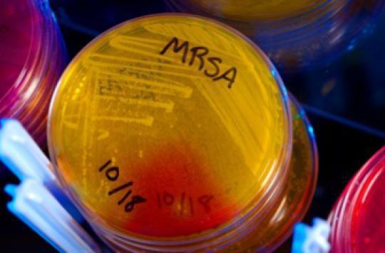 Une piste pour neutraliser les bactéries résistantes aux antibiotiques
