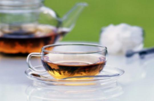 Cancers oraux : le thé vert combat les cellules tumorales