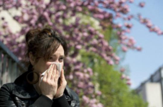 Allergie au pollen : son origine élucidée par des chercheurs