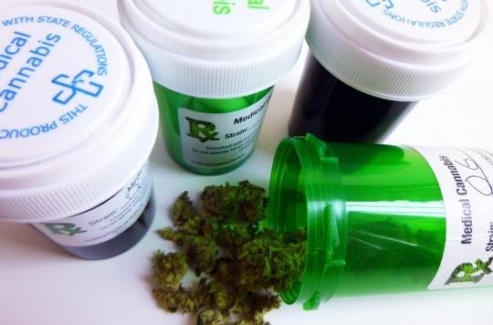Les premiers essais cliniques sur le cannabis thérapeutique débuteront en 2021