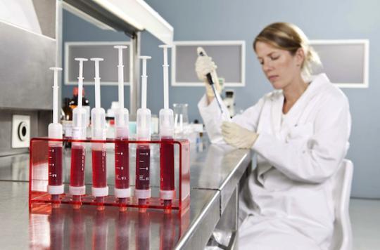 Cancers du sang : les thérapies cellulaires apportent une efficacité sans précédent