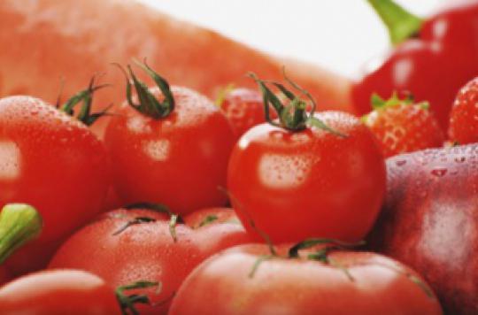Les bienfaits de la tomate sur les vaisseaux sanguins