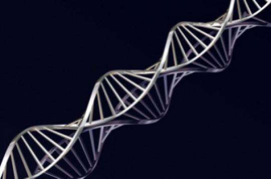 ADN : l'alphabet du vivant enrichi par deux nouvelles lettres