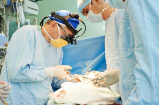 Journée mondiale : qui sont les donneurs d'organes