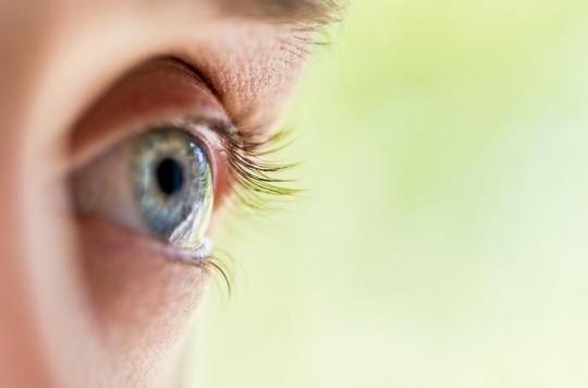 Comment le cerveau réagit à la perte de la vue ?