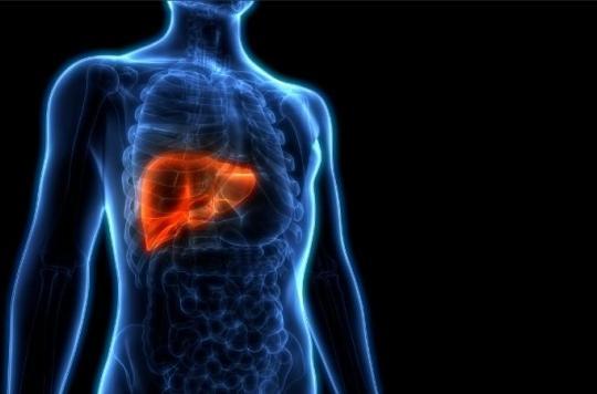 Prévention : savoir identifier les maladies du foie avant qu'il ne soit trop tard