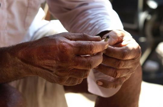 Inde : il tue son ami qu'il tient responsable de son cancer