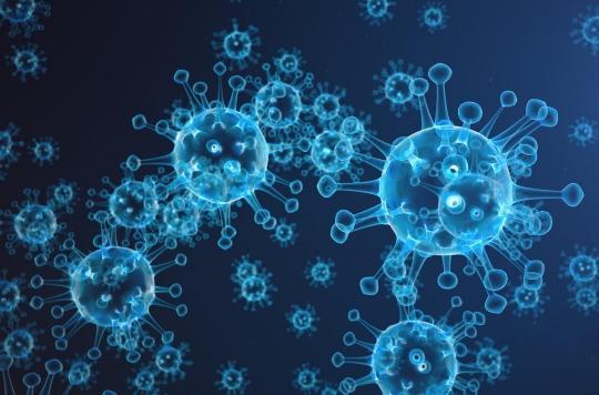 Comment notre système immunitaire a évolué pour nous rendre plus vulnérables à certaines maladies