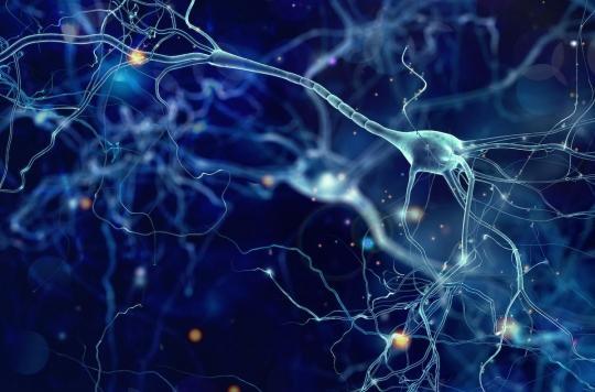 Concentration : comment notre cerveau gère ce qui nous distrait