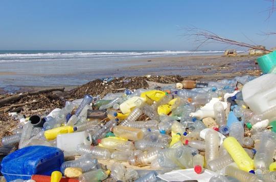 Pollution : les humains ingèrent des dizaines de milliers de particules de plastique chaque année