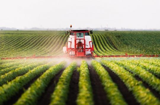 Pesticides : la justice reconnait l'origine professionnelle de Parkinson chez un arboriculteur
