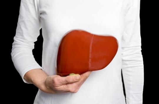 Maladies du foie : le cerveau atteint avant les premiers symptômes