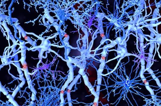 Insuffisance cardiaque : des chercheurs créent les premiers neurones artificiels