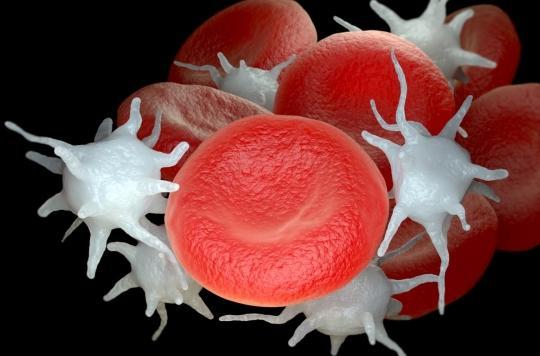 Comment les plaquettes sanguines protègent de la diffusion du cancer dans l'organisme