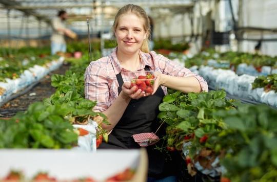Confinement : doit-on craindre une pénurie de fruits et légumes ?