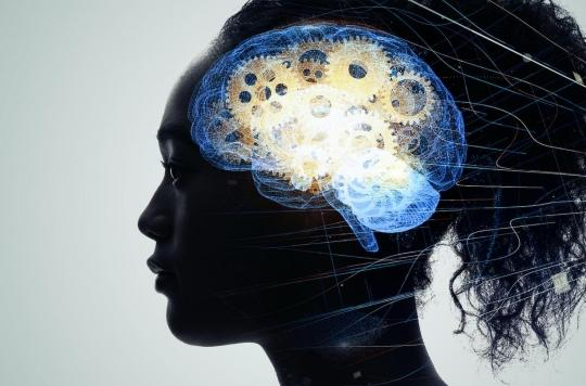 Notre cerveau met deux heures pour apprendre un nouveau mot