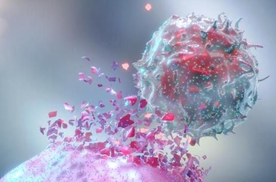 Cancer : vers un vaccin personnalisé composé d'éléments de la tumeur