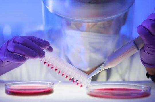 Cancer du sang : deux traitements anticancéreux révolutionnaires bientôt disponibles en France