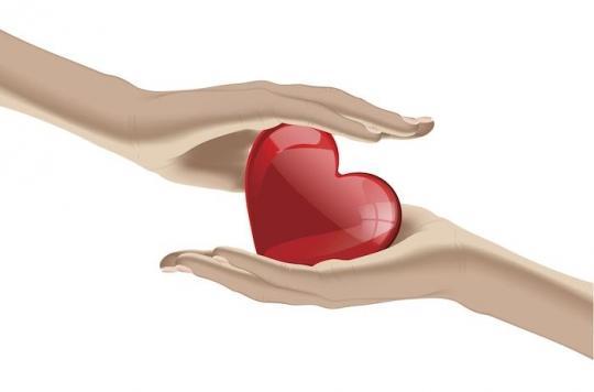 Don d'organes : 6105 greffes ont été réalisées en France en 2017, 19% de plus qu'en 2013