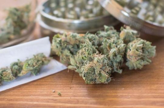 Cannabis : de plus en plus de jeunes enfants intoxiqués par accident