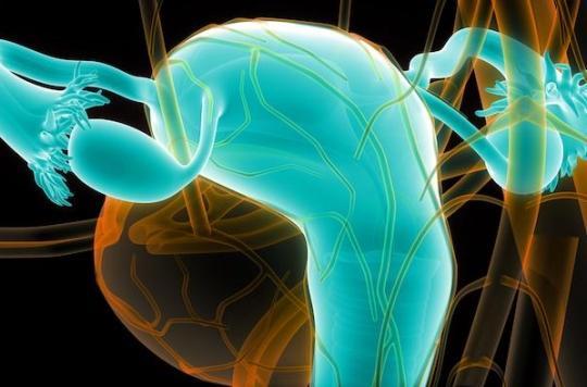 Fertilité : des ovaires artificiels pour aider les femmes à avoir des enfants après un cancer