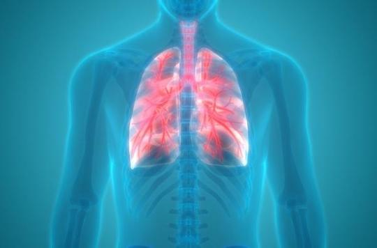 Greffe : un médecin français greffe avec succès des trachées artificielles sur 12 patients