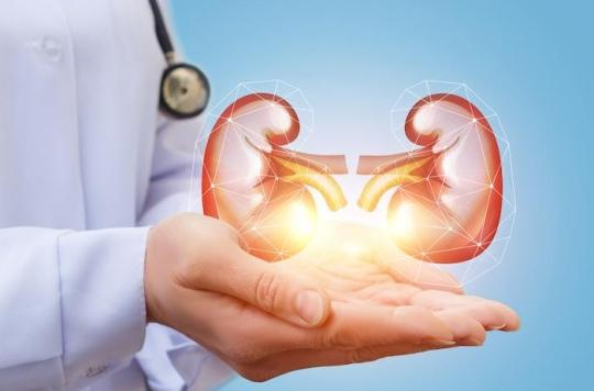 Diabète : le point de vue du néphrologue sur l'insuffisance rénale