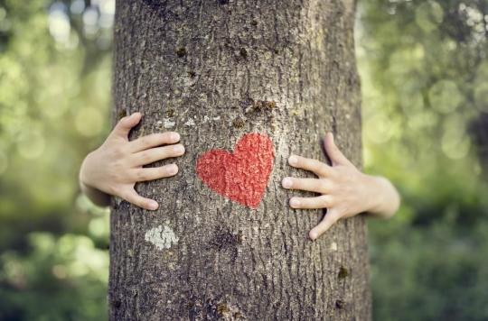 Cancers pédiatriques : la chimiothérapie modifie les cellules du cœur