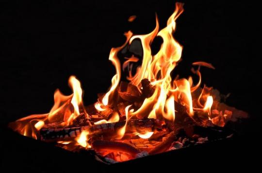 La combustion massive de bois nuit à la santé et à l'environnement, alertent des médecins