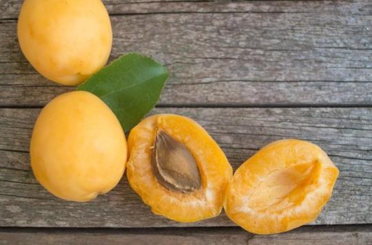 Intoxication et crise cardiaque : l'amande du noyau de l'abricot contient du cyanure