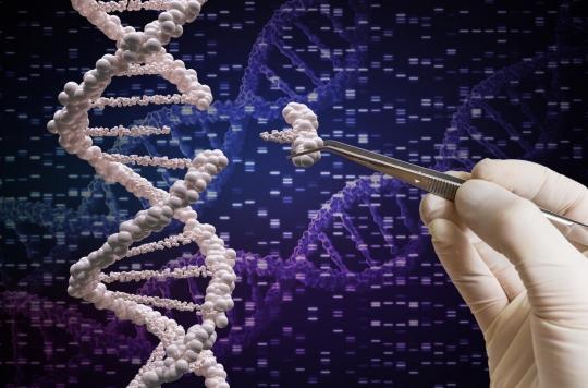 Chine: le chercheur à l'origine des jumelles génétiquement modifiées condamné à 3 ans de prison